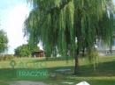 Zdjęcie 1 - Agroturystyka  - Białe, okolice Gostynina