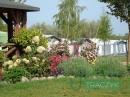 Zdjęcie 3 - Agroturystyka  - Białe, okolice Gostynina