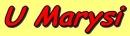 Zdjęcie 1 - U Marysi - Gliczarów Górny