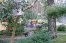 Zdjęcie 3 - Dom Gościnny w Lesie-Pobierowo