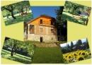Zdjęcie 11 - Gospodarstwo Agroturystyczne Dom Przy Wodzie nad Zalewem Sieniawa