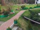 Zdjęcie 6 - Zefirek-pokoje gościnne - Stegna