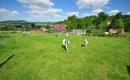 Zdjęcie 1 - Agroturystyka Viktoria - Siedlęcin dolnośląskie