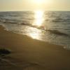 Zdjęcie 7 - Pole Namiotowe  Relaks - Białogóra