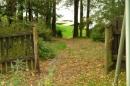 Zdjęcie 8 - Domek brązowy nad jeziorem Gowidlińskim-U Bożeny