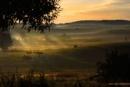 Zdjęcie 2 - Gospodarstwo Agroturystyczne Cztery Żywioły - tanie noclegi na Mazurach