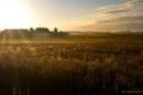 Zdjęcie 8 - Gospodarstwo Agroturystyczne Cztery Żywioły - tanie noclegi na Mazurach