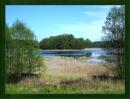 Zdjęcie 6 - Gospodarstwo Rybackie w Mułach nad Jeziorem Szlamy