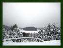 Zdjęcie 9 - Gospodarstwo Rybackie w Mułach nad Jeziorem Szlamy