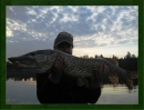 Zdjęcie 12 - Gospodarstwo Rybackie w Mułach nad Jeziorem Szlamy