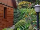 Zdjęcie 7 - Domek w Kwiatach - Narty koło Szczytna