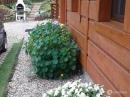 Zdjęcie 10 - Domek w Kwiatach - Narty koło Szczytna