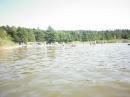 Zdjęcie 1 - Biwak pod sosnami - Okartowo