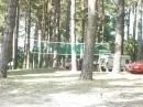 Zdjęcie 2 - Biwak pod sosnami - Okartowo