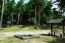 Zdjęcie 9 - Biwak pod sosnami - Okartowo
