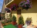 Zdjęcie 2 - Relaks - pokoje gościnne, campingi - Sarbinowo